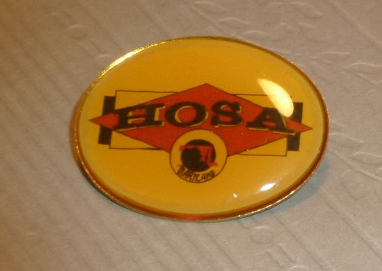 HOSA Maryland lapel Pin 1.25""