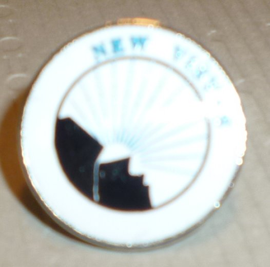 NEW VISTAS round lapel Pin 0.75""