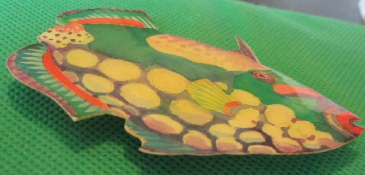 Colorful FISH refrigerator frig MAGNET 3.25""
