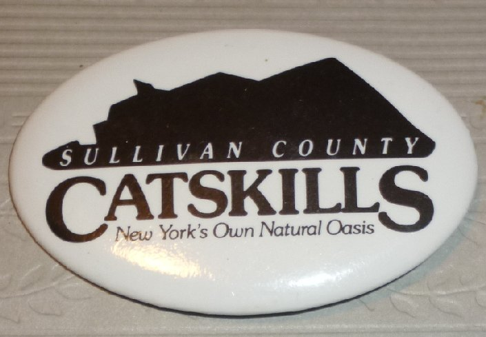 Vintage CATSKILLS Mountain Sullivan County New York oval button
