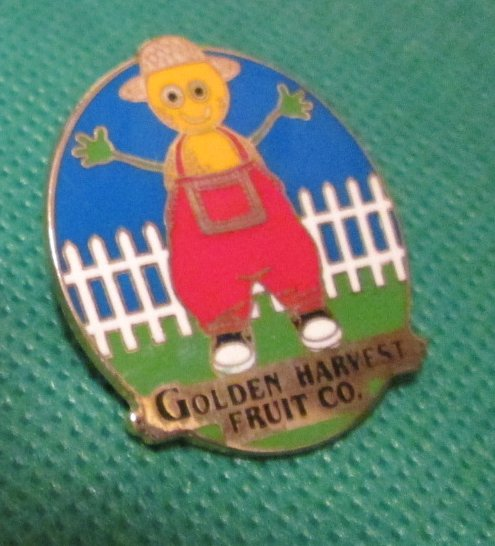 GOLDEN HARVEST FRUIT COMPANY pinback lapel PIN 1.25""